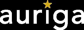 Auriga Services